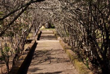 Quinta da Ribafria - LISBON SAIL - BOAT TOURS